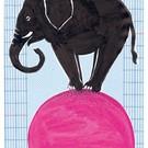 schönegrüsse Circus - Elefant