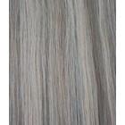 Hairworkxx Clip in Hairextensions Kleur 10/16 Ash Brown/Ash Blonde