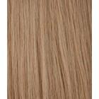 Hairworkxx Clip in Hairextensions Kleur 12 Honey Brown
