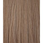 Hairworkxx Clip in Hairextensions Kleur 10 Ash Brown