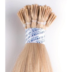 Euro SoCap Ring-On Extensions 1004 / Extras Very Light Ash blond