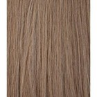 Hairworkxx Staart Kleur 10 - Ash Brown