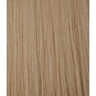 Hairworkxx Staart Kleur 14 - Salmon Blond