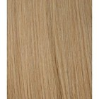 Hairworkxx Staart Kleur 18 - Nature Blond