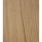 Hairworkxx Staart Kleur 18 - Nature Blond