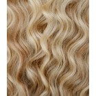 Hairworkxx Staart Kleur 12/613+613 - Honey Brown/ White Blond + White Blond