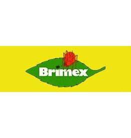 BRIMEX Hypoaspis Miles Roofmijt 10.000stuks