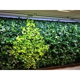 Living Wall LED grow lights