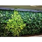 Parus LED wachsen Licht Grüne Wand 90cm 90 °