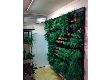 Linear LED Spot 120 ° grüne Wand