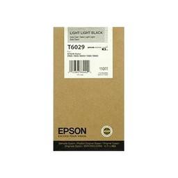 Epson T6029 Licht Licht Zwart 110ml