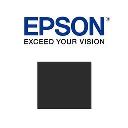Epson T804700 Licht Zwart 700ml