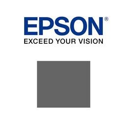 Epson C13T76074010 Grijs 25,9 ml