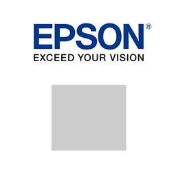Epson C13T76094010 Licht Grijs 25,9 ml