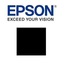 Epson Foto zwart 700ml - T800100