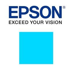 Epson Cyaan 700ml - T800200