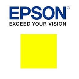 Epson Geel 700ml - T800400