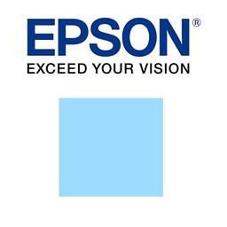 Epson Licht cyaan 700ml - T800500