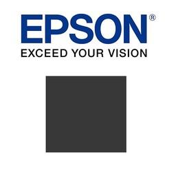 Epson Donker grijs 700ml - T800700
