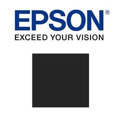 Epson Mat zwart 700ml - T800800
