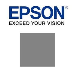 Epson Grijs 700ml - T800900