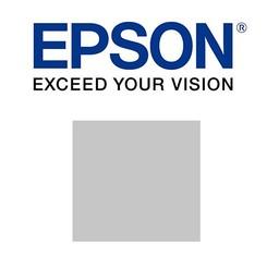 Epson Licht grijs 700ml -T800000
