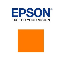 Epson C13T913A00 Oranje ink 200ml