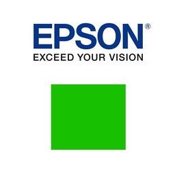 Epson C13T913B00 Groen ink 200ml
