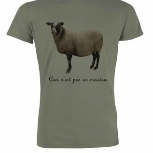 Mouton LIGHT KHAKI