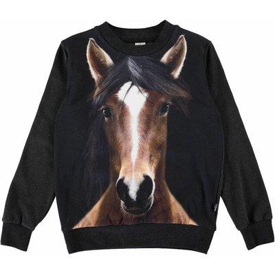 Molo shirt Horse
