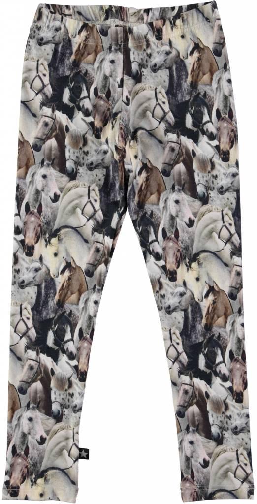 molo zebra leggings