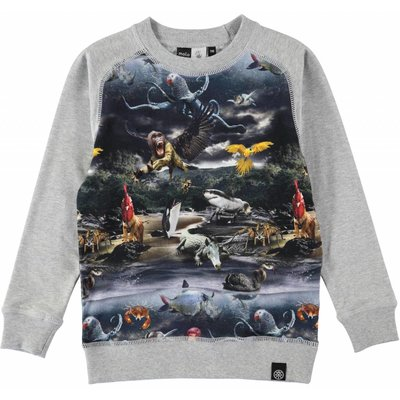 Molo Shirt Mutant Island