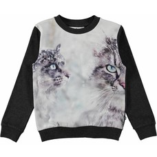 Molo shirt Snow Cats