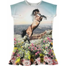 Molo shirt Mountain Horse