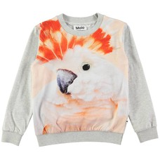 Molo shirt Cockatoo