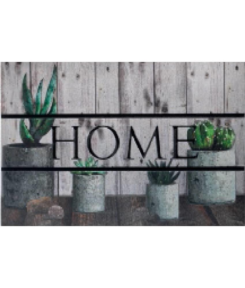 ECO Master 45x75 cm. Home Cactus