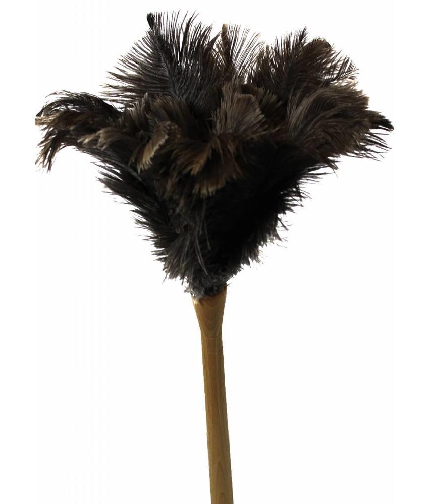 Struisvogel Plumeau dikke steel