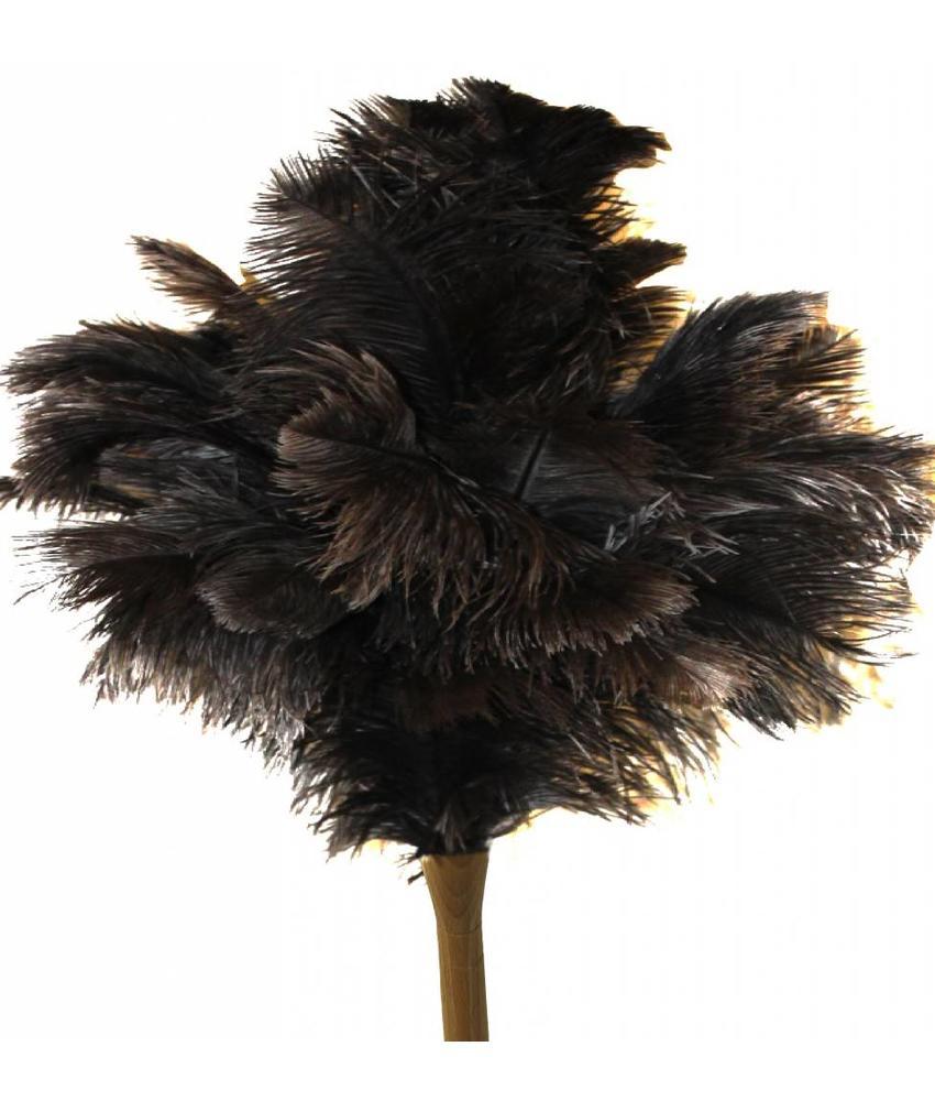 Struisvogel Plumeau extra dik