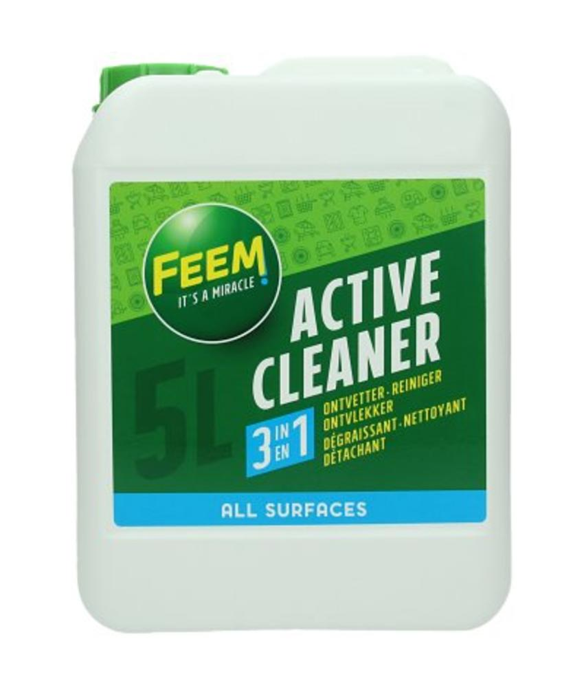Feem Active Cleaner 5 L.