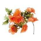 Basil Bloemenslinger Peony Oranje