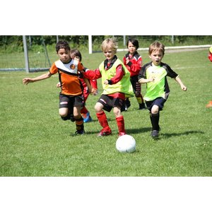 Soccer Soccer Recreational Soccer Pee-Wees (Age 5-6)