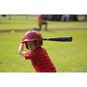 Baseball ABF Baseball Coach Pitch (BeeBall Majors): Ages 9 and under