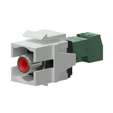 Procab VCK105P/W Keystone RCA connector wit