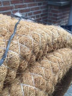 Drainage kokos
