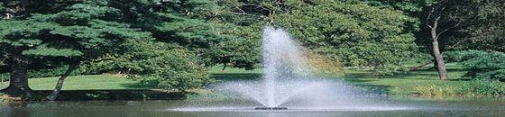 Otterbine Phoenix drijvende fontein