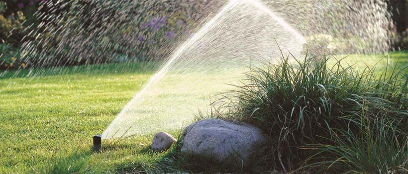 Wat heb ik nodig voor tuinberegening? Vraag hier uw ontwerp aan!