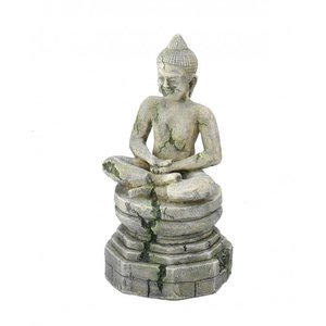 Aqua Della Bayon buddha