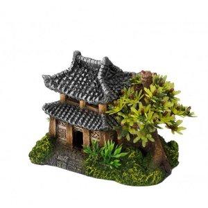 Aqua Della Asian house