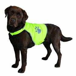 Veiligheidsjassen hond