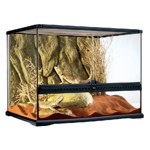 P16 Glazen terrarium incl. achterwand 60x45x45cm